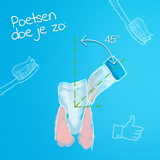Oralcomp marktonderzoek